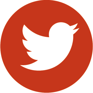 Icone Twitter Enim